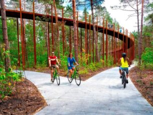 fietsen-in-de-bomen-3